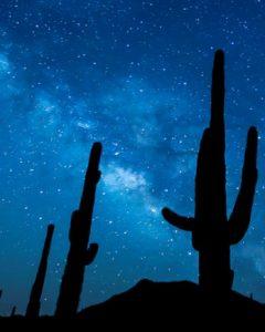 Astronomy - Desert night sky