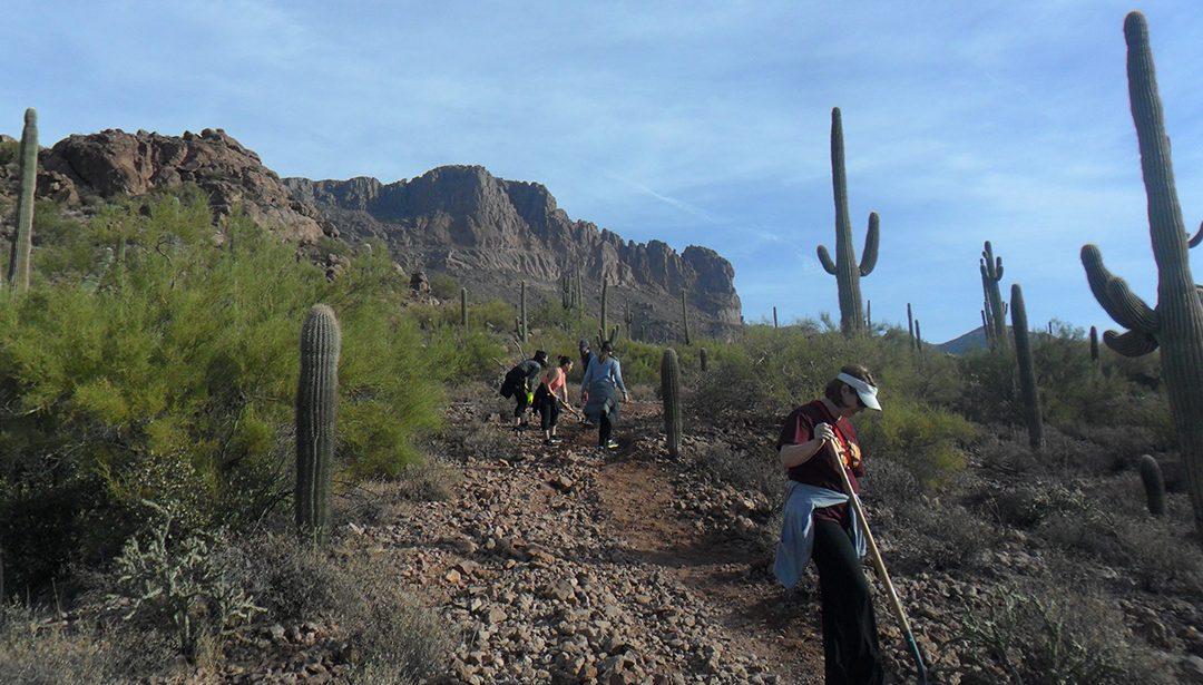 Radiologic Technology students perform trail work