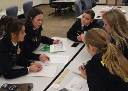FFA Team working together during FFA Field Day at CAC