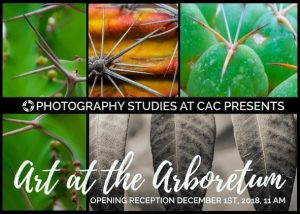 Photography Image announcing Exhibit at Boyce Thompson Arboretum
