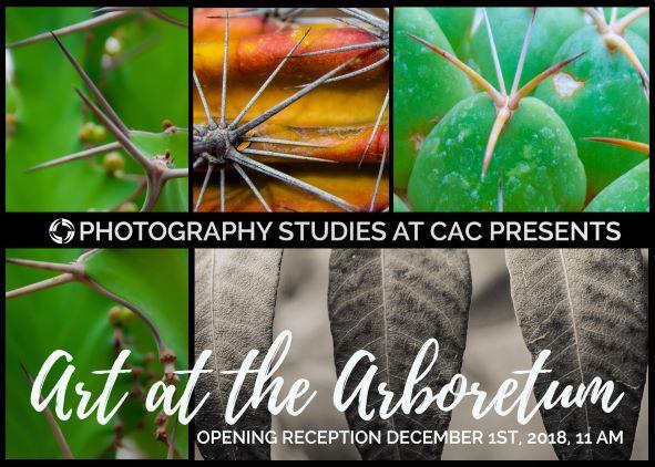 Photography Image announcing Exhibit at Boyce Thompson Arboretum