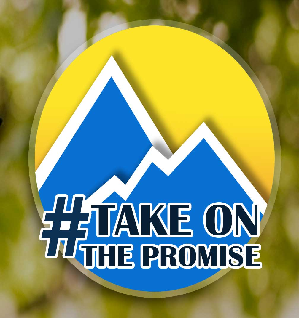 # Take on the promise