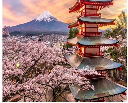 japan study abroad flyer