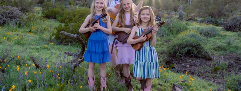 Arizona Wildflower Band