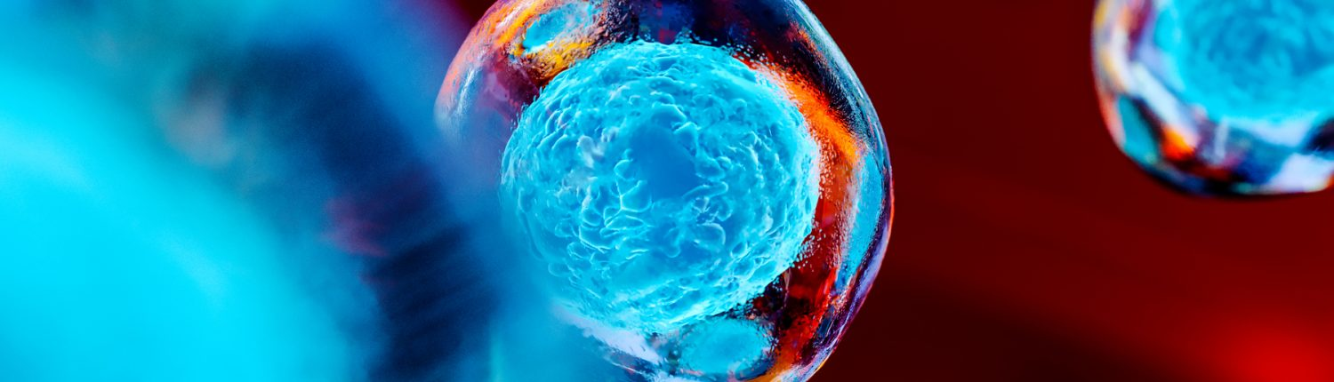 abstract stem cells